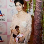 Lux Style Awards 2013 Red Carpet Celebrities