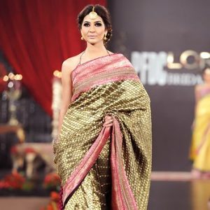 The Glamour of a Sari