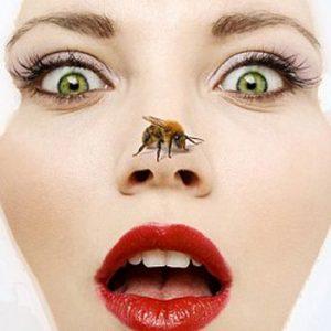 Bee Venom Facials