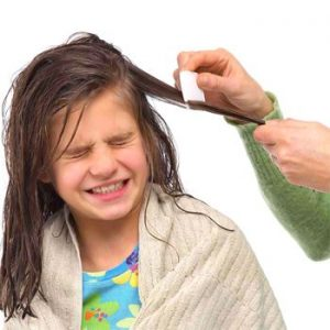 Hair Care to Overcome Hair Lice Problems
