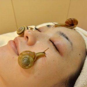 'Snail Facials' To Improve Skin Health Via Mucus Trail