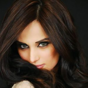 Mehreen Syed Encounters A Road Accident