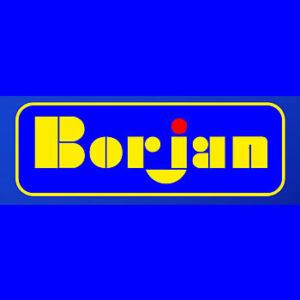 Borjan (Pvt) Limited - Pakistani Fashion Footwear