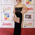 Red Carpet - Servis 2nd Hum Awards 2014
