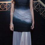 The 1st ARY Film Awards 2014 - Red Carpet