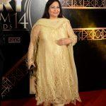 1st ARY Film Awards 2014 - Red Carpet
