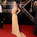 The 1st AFA 2014 - Red Carpet