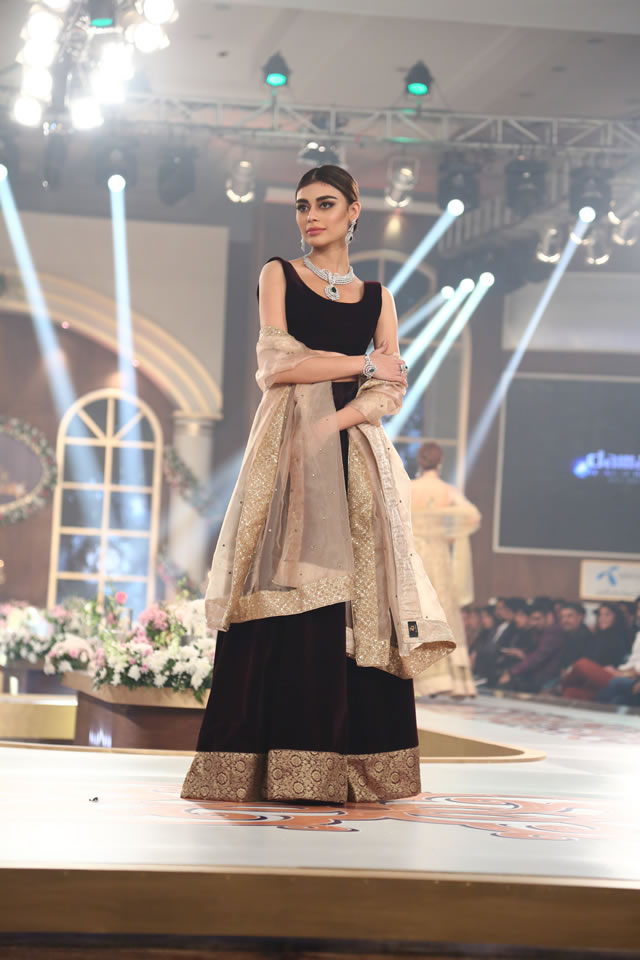 2015 TBCW Damas Latest Collection Images