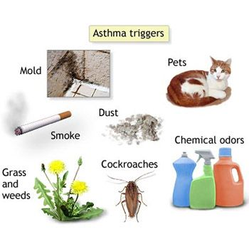 5 Common Asthma Triggers