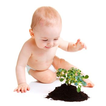 Are Babies Afraid of Plants?