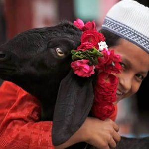 How Parents should guide kids about sacrifice goats on Eid ul Adha