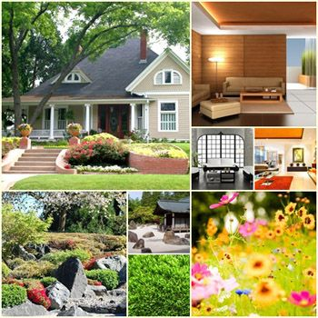 The Insider's Guide to Home & Garden