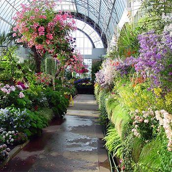 Winter Garden Decoration Ideas