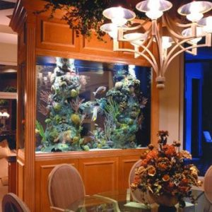 Decorating Your Home With Beautiful Aquarium Design Ideas