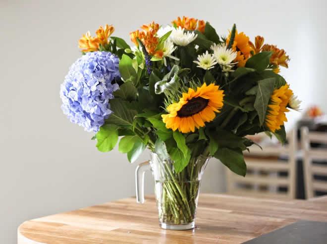 flowers vase pics