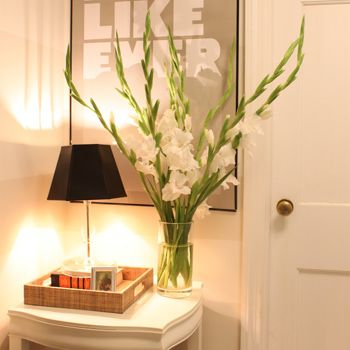 Wonderful Hallway ideas for your Home