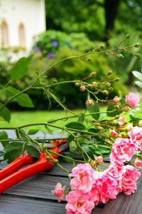 Easy Tips for Summer Home Care