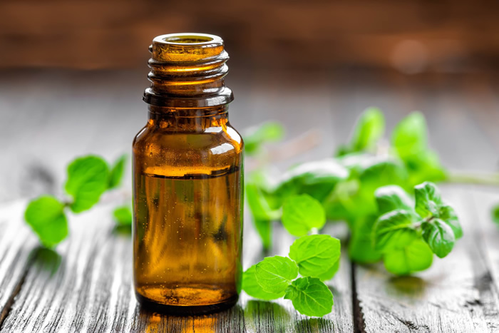 Adding Peppermint Oil To Shampoo Or Conditioner
