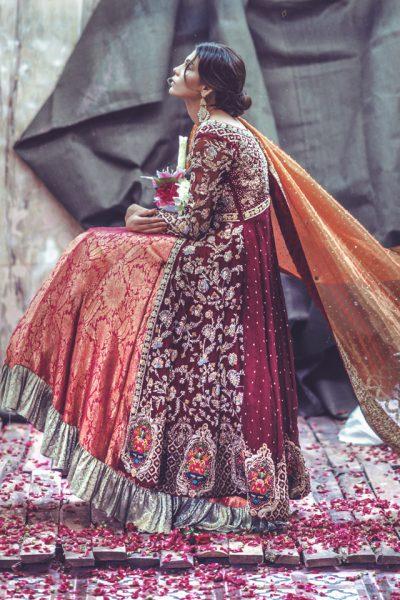 Zarmisha Dar New Collection