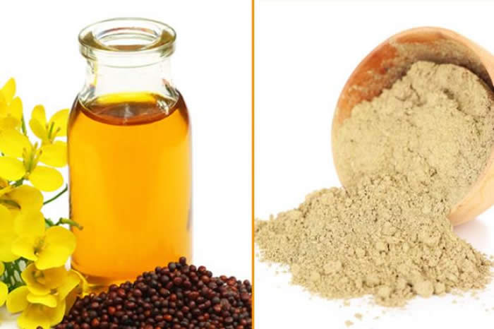 9 Simple Home Remedies You Can Try If You Are Tired Of Hair Fall